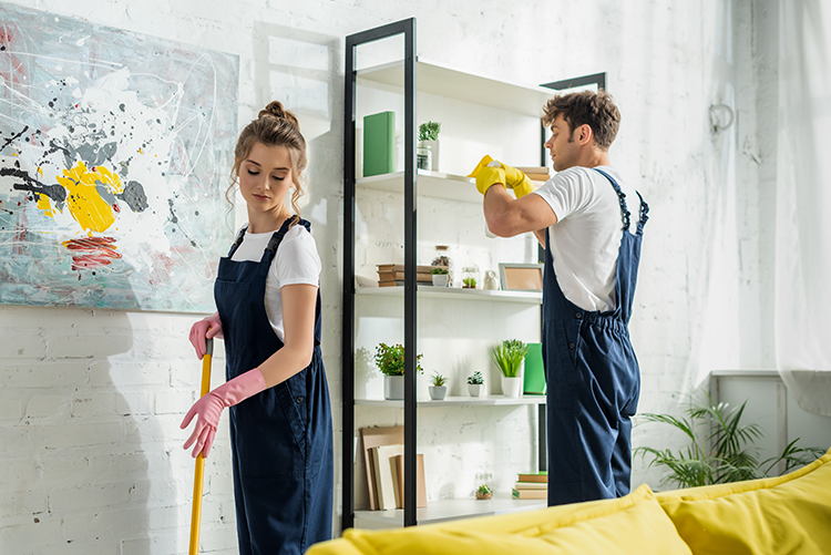Montreal Fall and Spring Cleaning Services